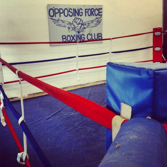 Opposing Force Boxing Ring